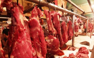 Konsumsi daging sapi di Indonesia dan ketersediaannya